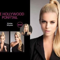 The Hollywood Ponytail